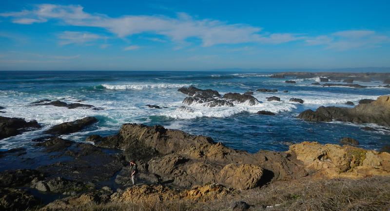Pondering the Waves