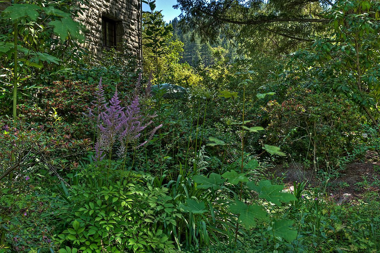 Benbow garden - HDRI image