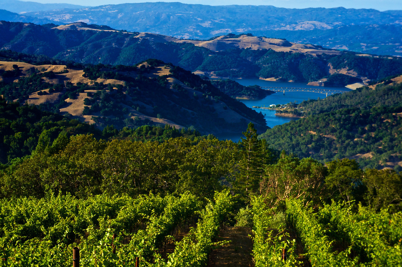 A view of Lake Sonoma