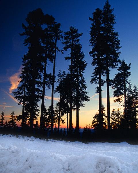 Sunset, Bunny Flat Mount Shasta California