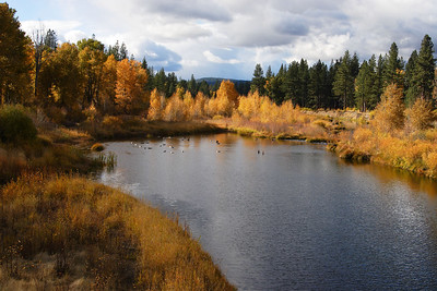 Fall Colors and Lake Graeagle, Plumas County California