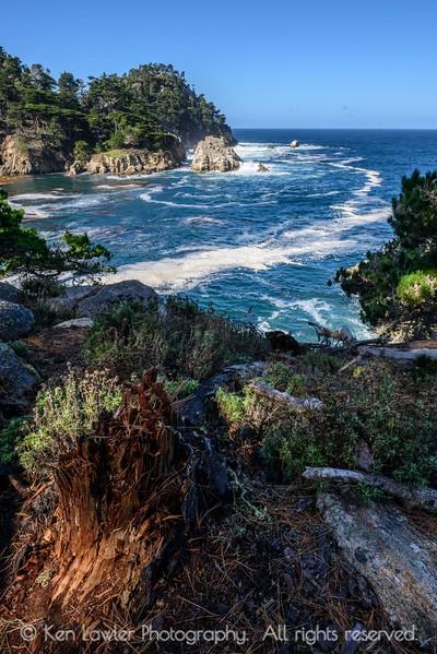 Bluefish Cove overlook