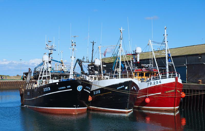 Portavogie Fishing Boats