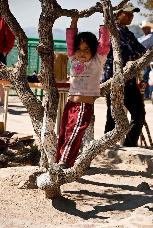 Tarahumara Indian child swinging on tree