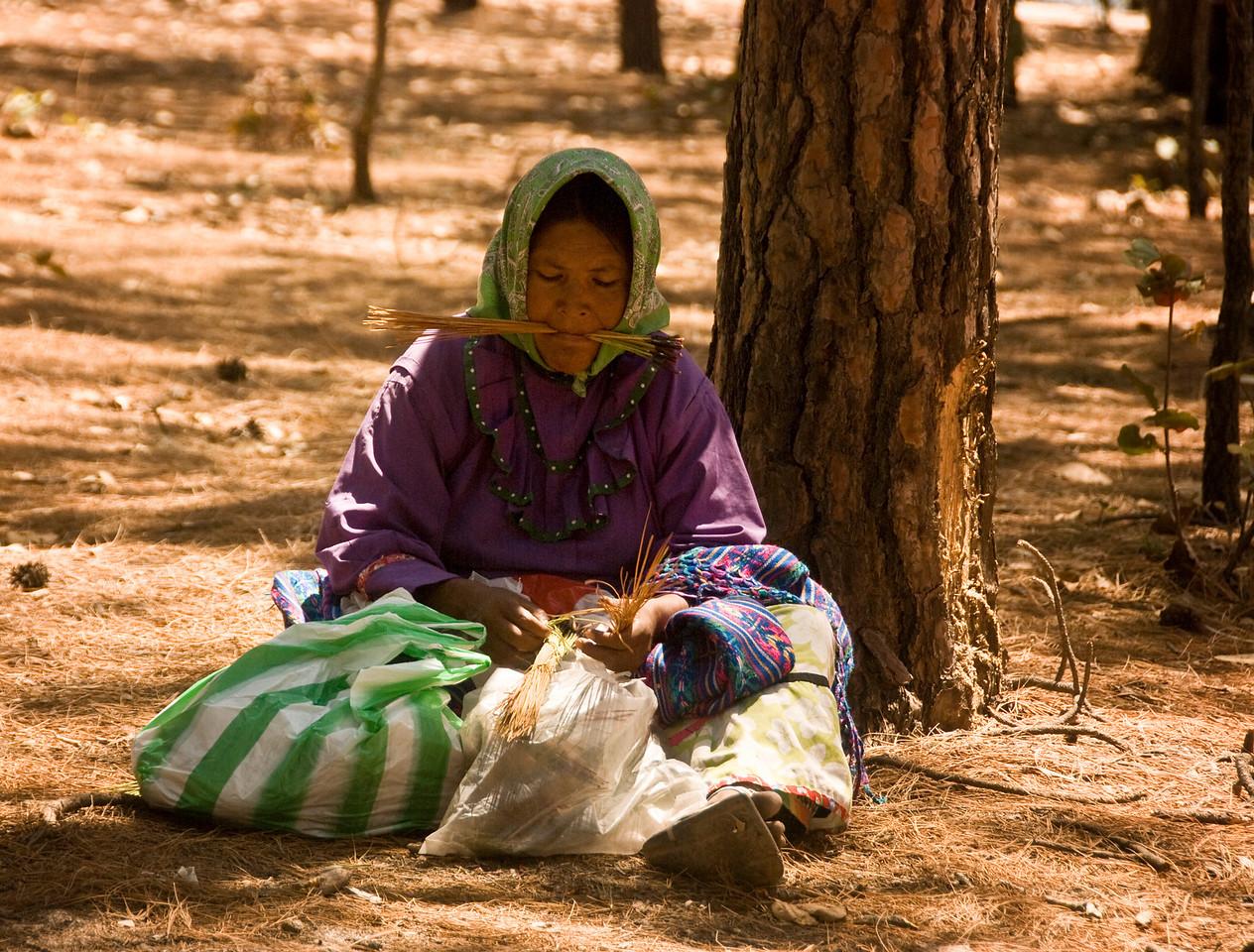 Tarahumara Indian woman weaving basket
