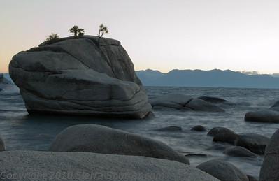 Bansai Rock