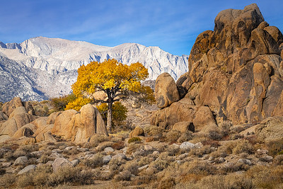 Alabama Hills in Fall 0917