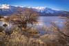 Washoe Lake Feb 16 2017