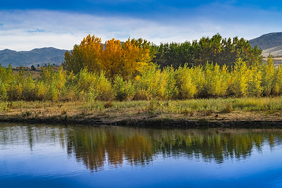 Fall on the Truckee River
