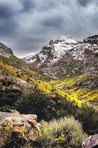 Lamoille Canyon 5301