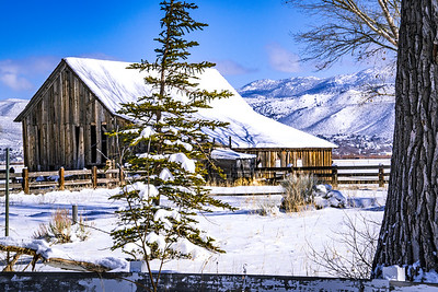 Twaddle Ranch Winter Morning