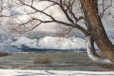 Washoe Lake Winter 6390