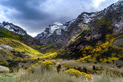 Lions Camp, Lamoille Canyon