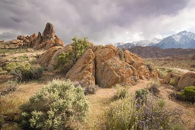 Alabama Hills in Spring