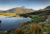 Cordillera Castillo reflected in the Ibanez River with Chilean redbush, Mirador Confluencia, Carretera Austral near Lago Verde