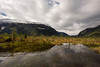 Valley after forest fire with clouds and reflections, Route X-904, Tortel, Patagonia.