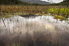 Pond reflections with snow-capped mountains, reeds and burned tree trunks, X-109, Tortel, Patagonia