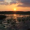 Sunset at Fogg Dam