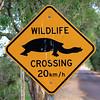 Sign at Fogg dam