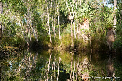 Balanda Mirri waterhole visit - May and June 2009