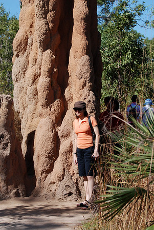 Magnetic termite mounds - April 2008