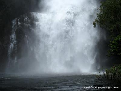 Wangi Falls - March 2008