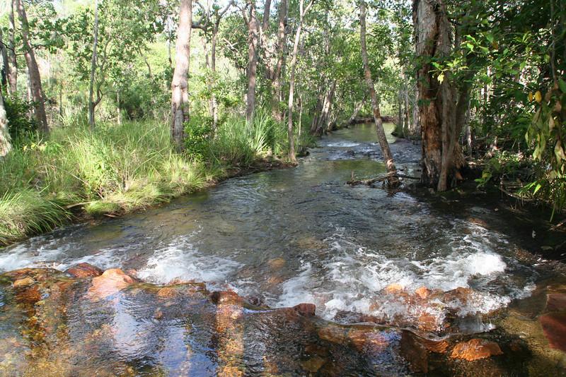 Creek above Florence Falls