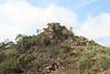Rock outcrop above Tolmer Falls