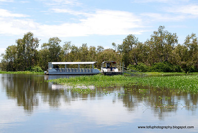 Photos taken during a boat cruise at Yellow Water Billabong, Kakadu National Park, Northern Territory, Australia, in March 2008