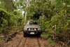 A visit to the billabong near Djurranalpi Outstation on Elcho Island in July 2008