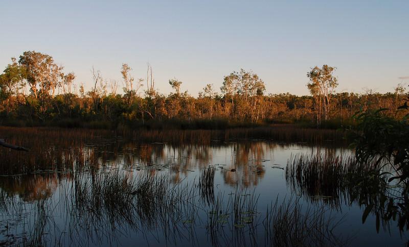 The Galiwinku Swamp, April 2008