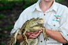 Tour guide holding a juvenile crocodile in the Darwin rural area in March 2008
