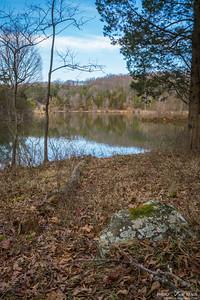 Pond Rock