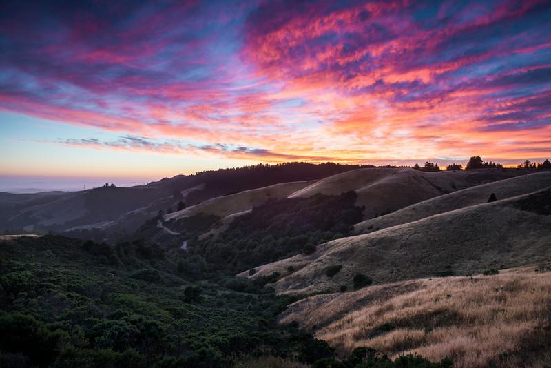stick around | woodside, california