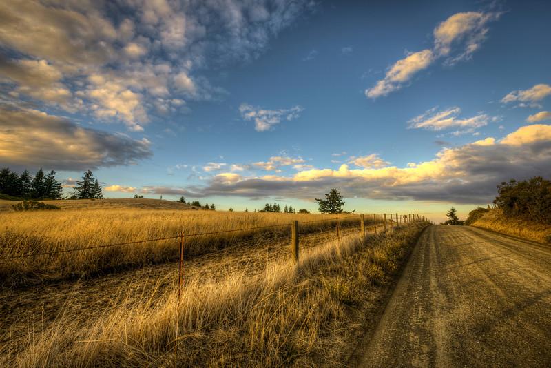 fifteen into the golden hour | palo alto, ca