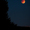 blood eclipse | marin county, california