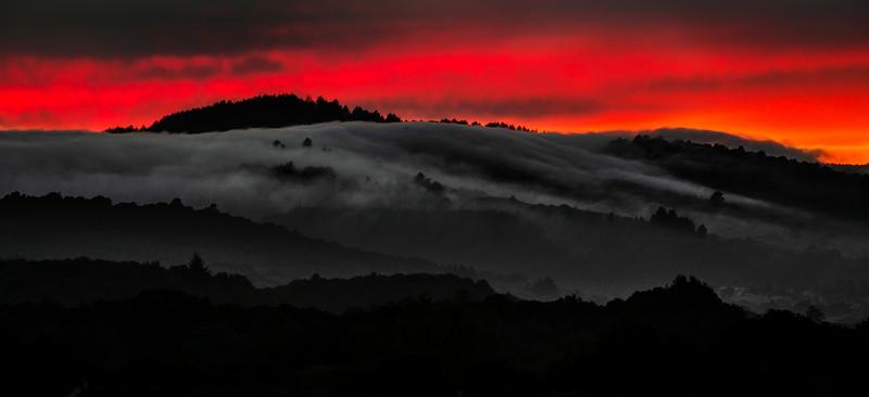 l a v a | san carlos, california