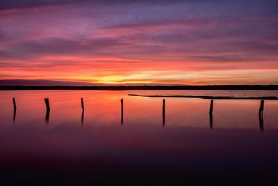 Alviso, California, Sunset, Landscape