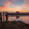 Newark, California, Landscape, Sunset, Baylands Park