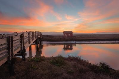 Newark, California, Landscape, Sunset, Baylands Park