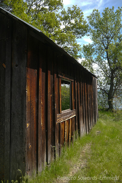 An old cabin/building near camp.