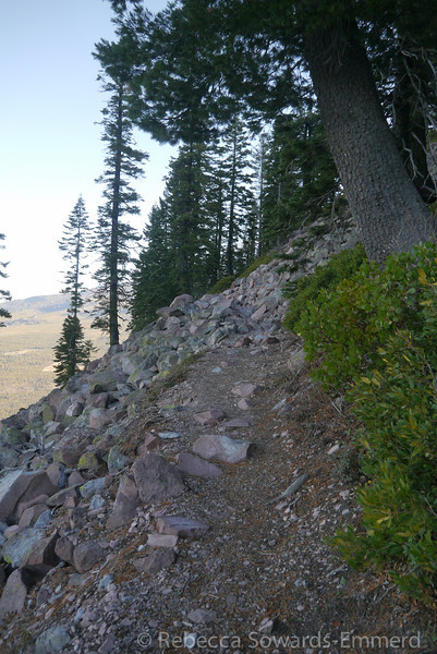 As we wrapped back around the north side of the Butte we ended up back in trees and dirt path for a while.