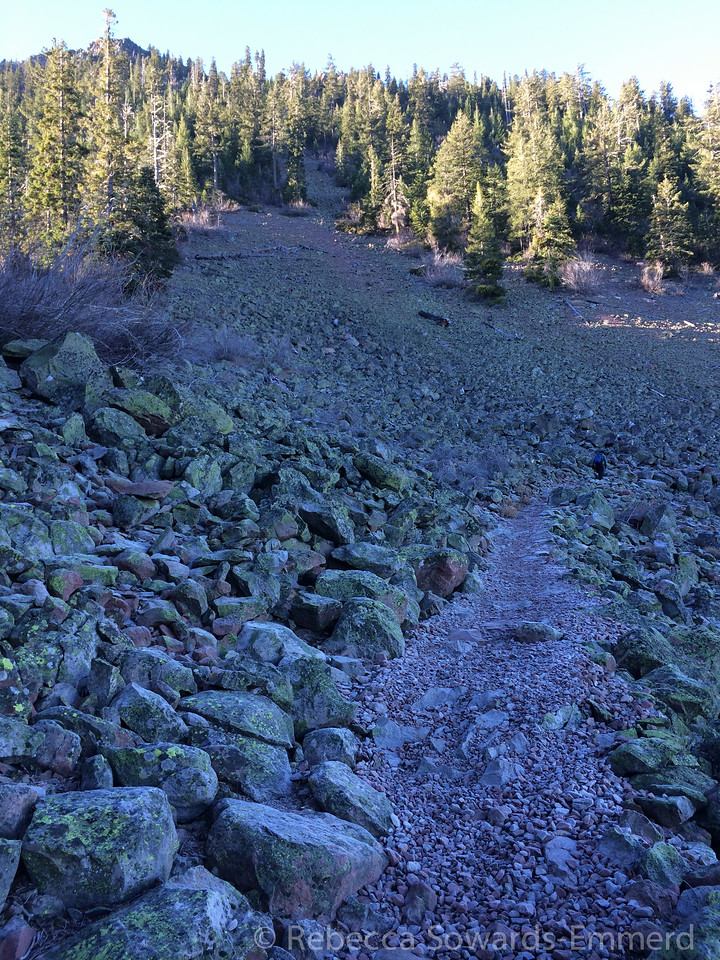 During the first ~mile, every once in a while you emerge from the forest cover to volcanic rubble.