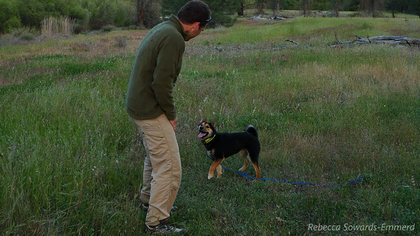 Rob plays with Deon's dog Kuma