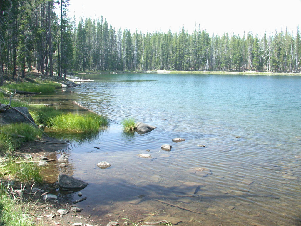 Caribou Wilderness