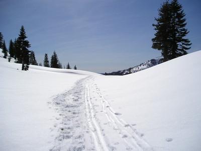 End of cutoff trail
