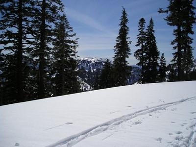 Tracks and views