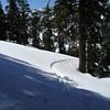 Cutoff trail