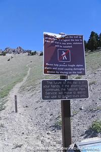 Do not cut trail, please.
