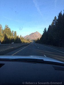 Black Butte straight ahead. I've always wanted to hike to the top of that thing, maybe soon...